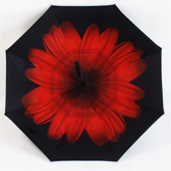 Inverted Umbrella